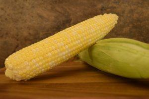 Corn - Ambrosia