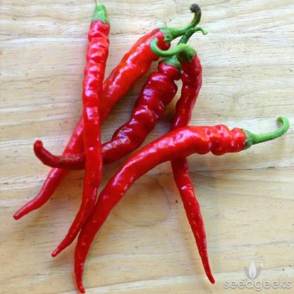 Pepper - Cayenne Long Red Thin