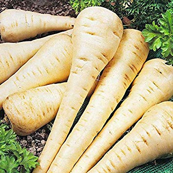 Parsnip - Hollow Crown