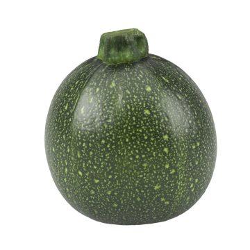 Squash - Zucchini Round