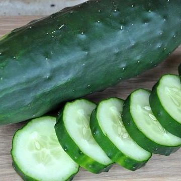 Cucumber - Poinsett 76